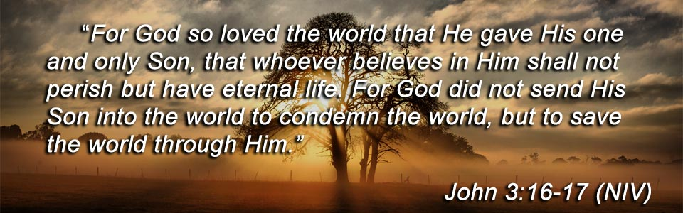 Jesus Christ, John 3 16 - 17, God  | HCN